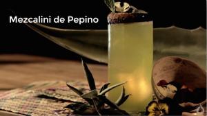 dash-mezcal-mezcaloni-de-pepino