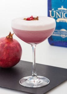 dash-javier-caballero-pomegranate-martini
